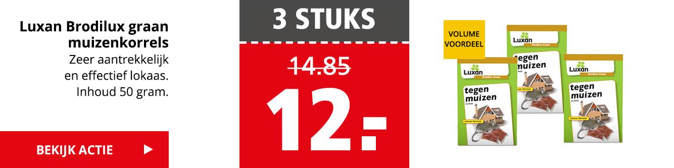 3 STUKS 12.- | Luxan Brodilux graan muizenkorrels | Bekijk actie >